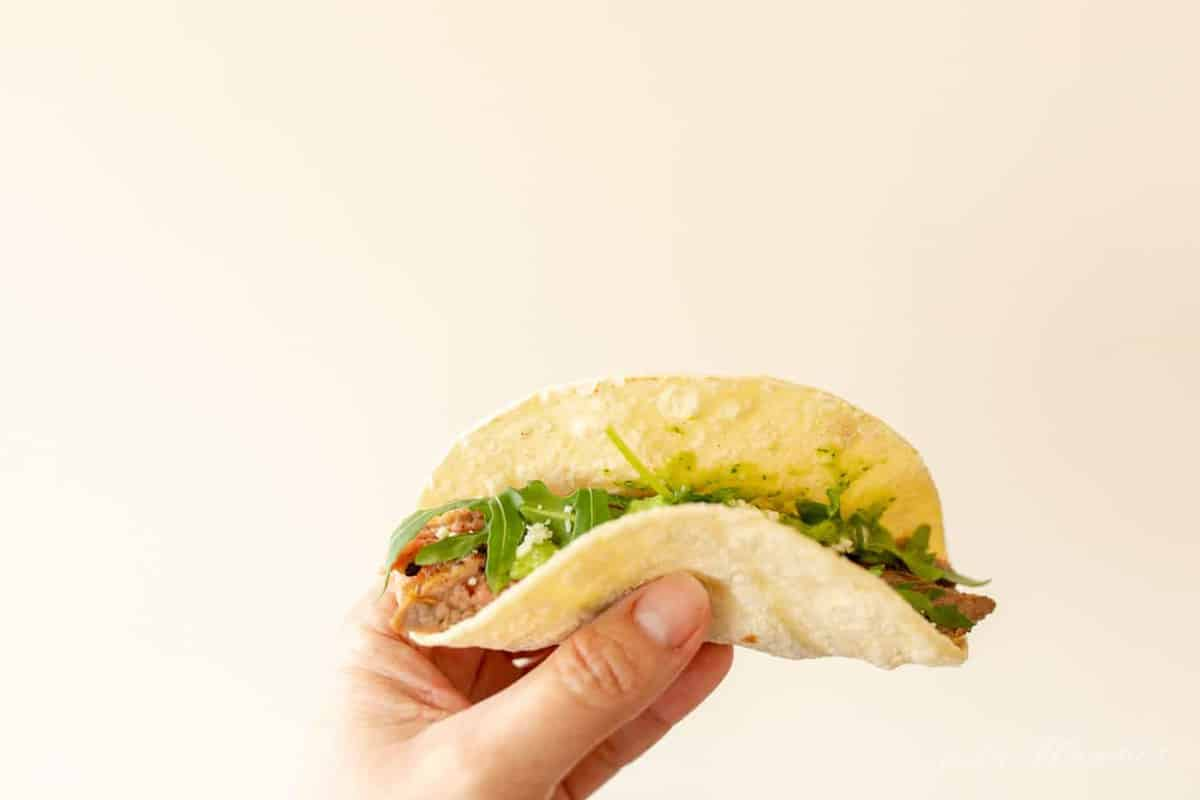 White background, hand holding a single taco de carne asada.