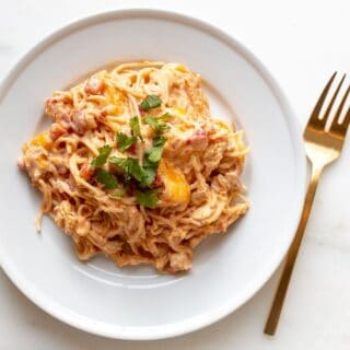 A white plate filled with chicken spaghetti bake.