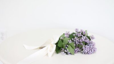 White background with a lilac bouquet created out of common purple lilac from a backyard.