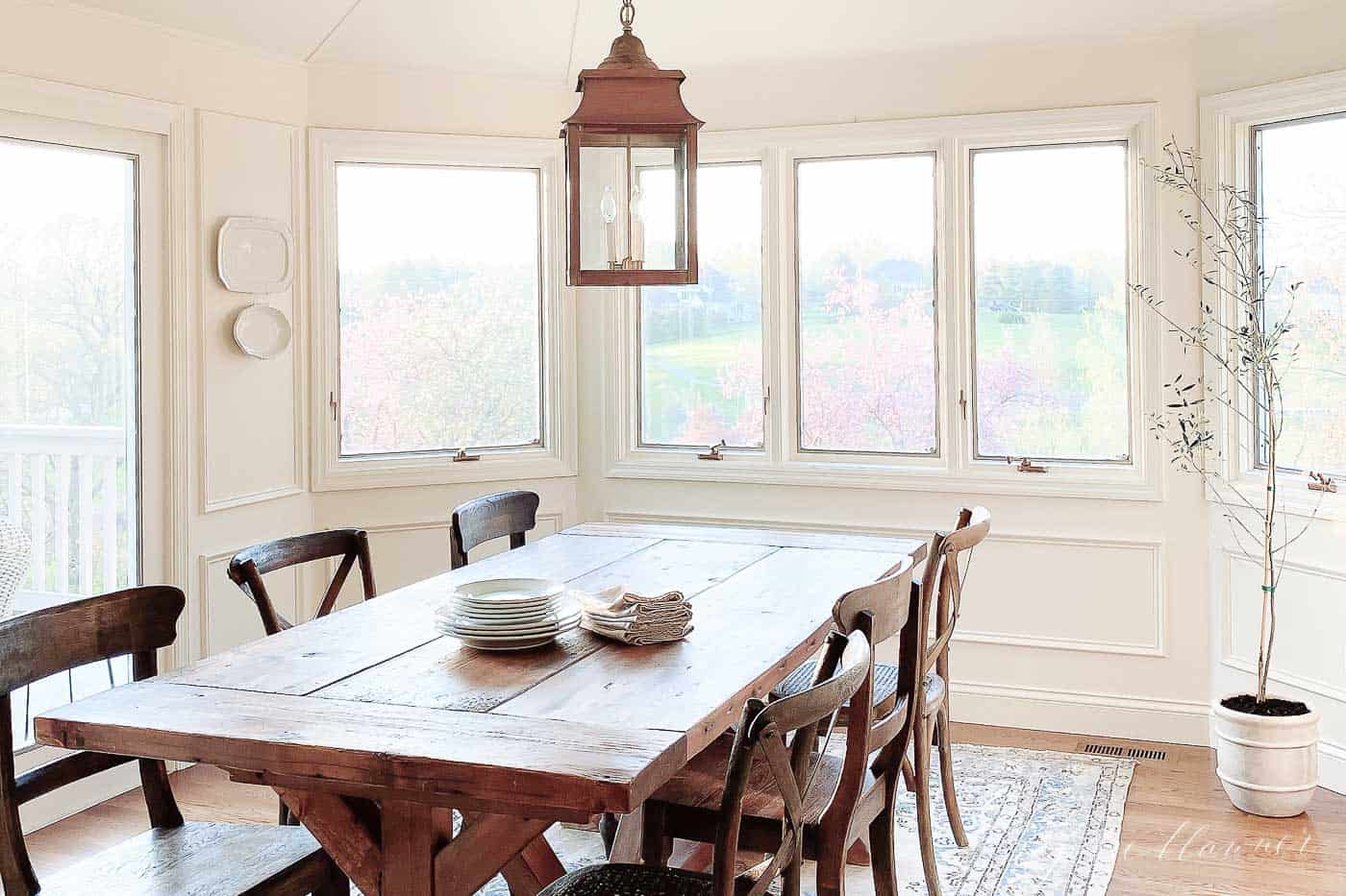 a white dining room with lots of windows, tall easy houseplant in the corner