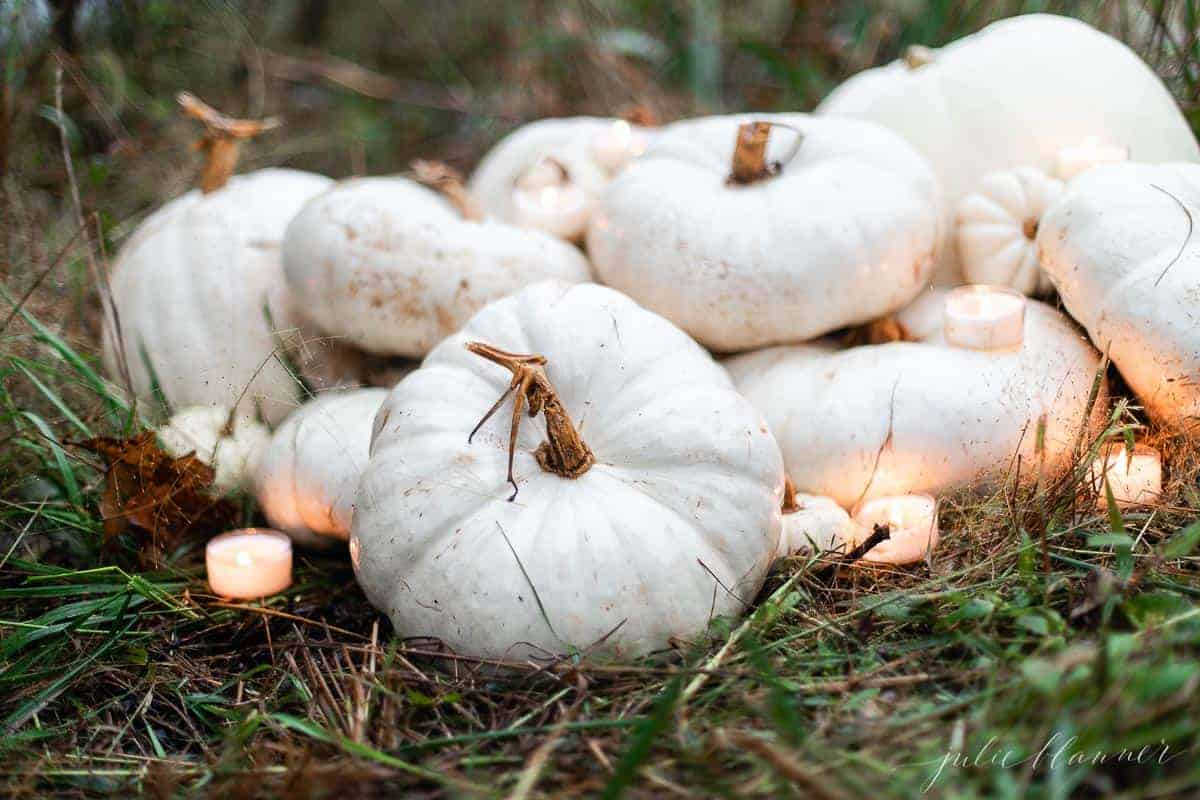 A pile of white pumpkins under candlelight