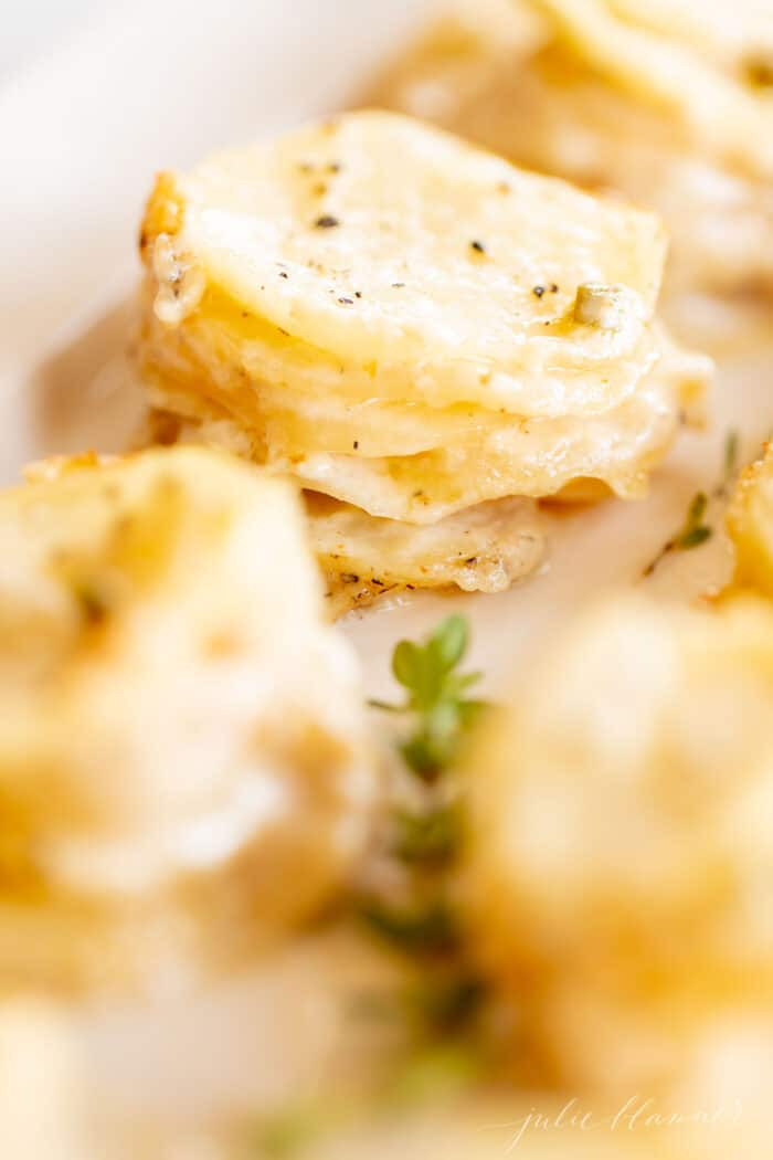 Individual stacks of potatoes au gratin on a white platter with touches of fresh thyme for garnish.