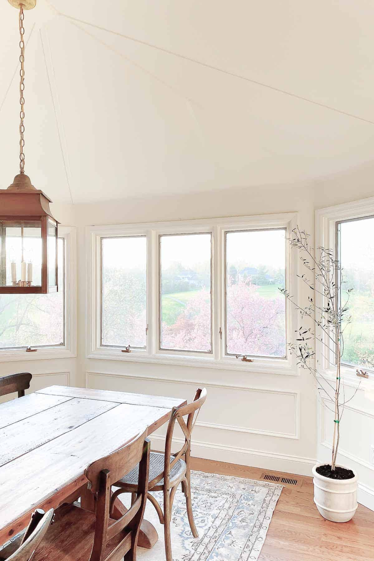 A white dining room with lots of windows, a wooden farm table and an indoor olive tree in the corner.