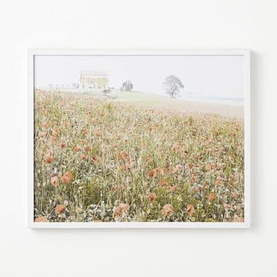 framed photo of wildflowers