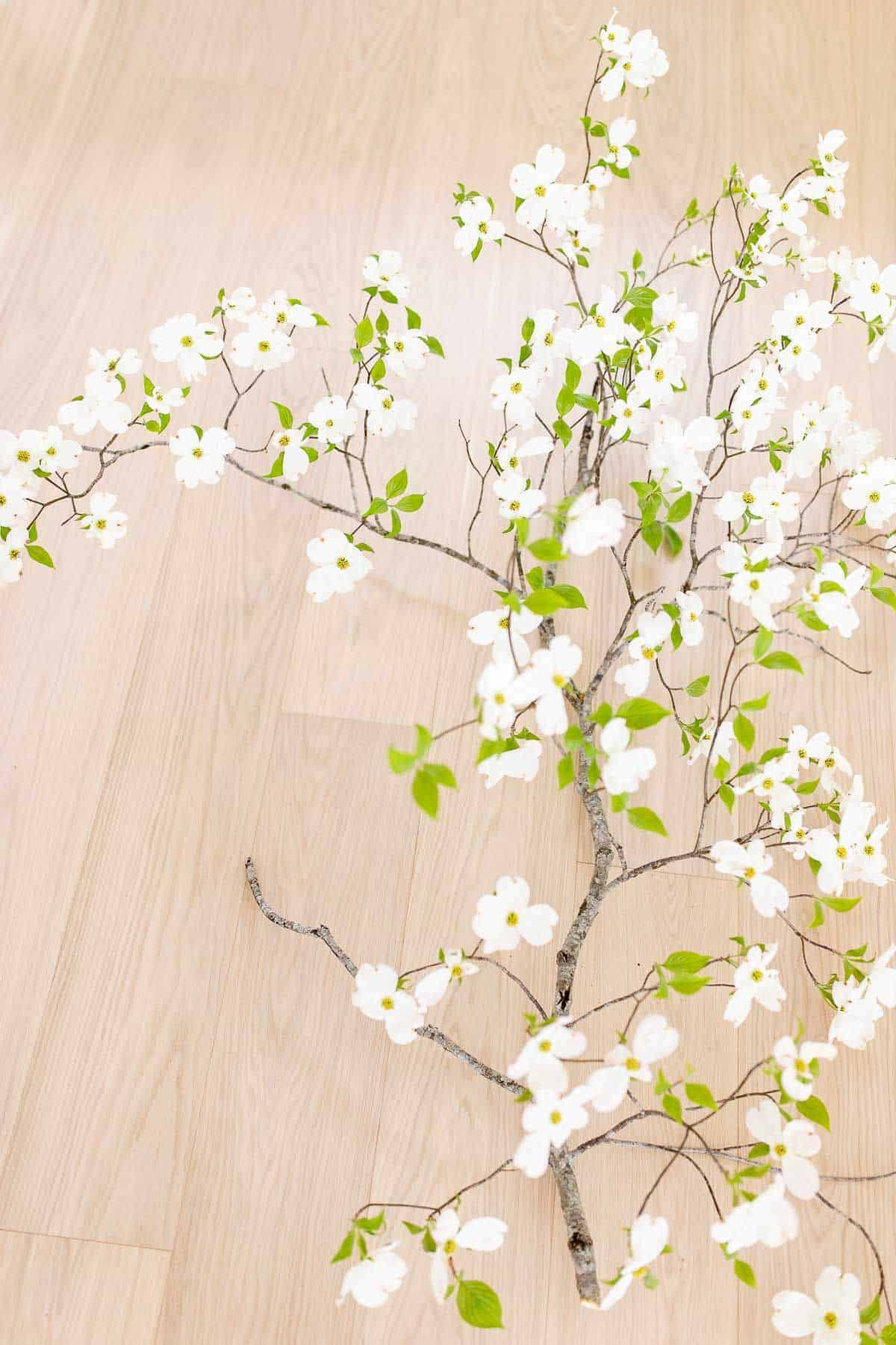 White oak floors with a branch of white blooming dogwood laying across.