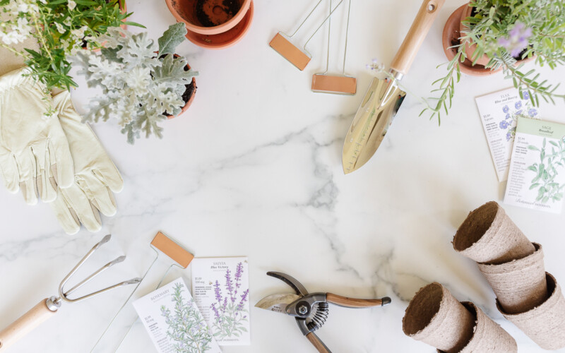 array of gardening tools and accessories on marble