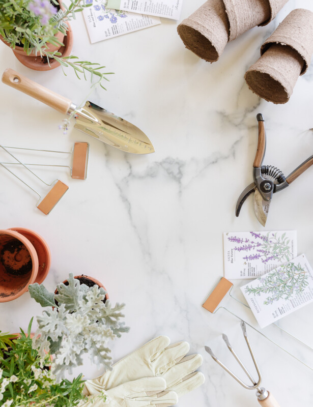 gardening tools and accessories displayed on marble